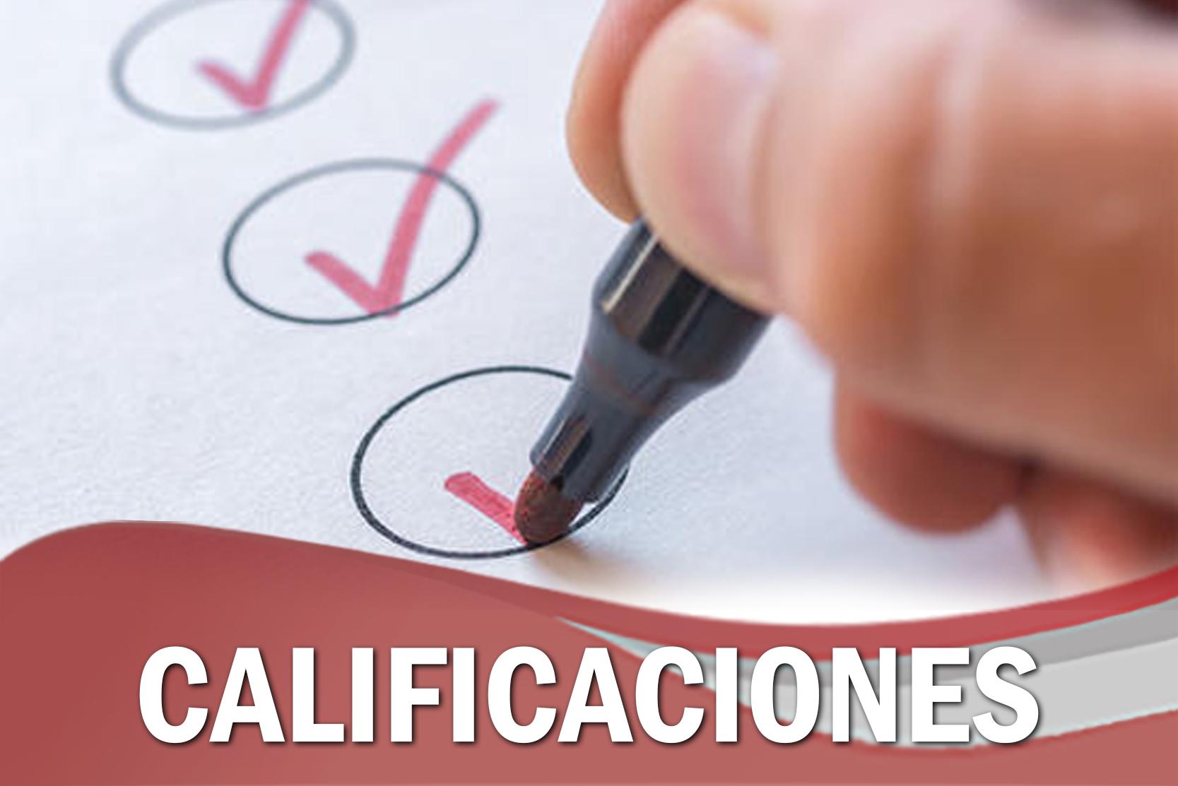 CALIFICACIONES CURSO SALIDAS Y SANCIONES ALTERNATIVAS, EN EL MARCO DE LA LEY 348